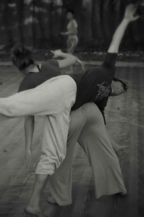 "Contact Improvisation : ""Taking Root to Fly"""